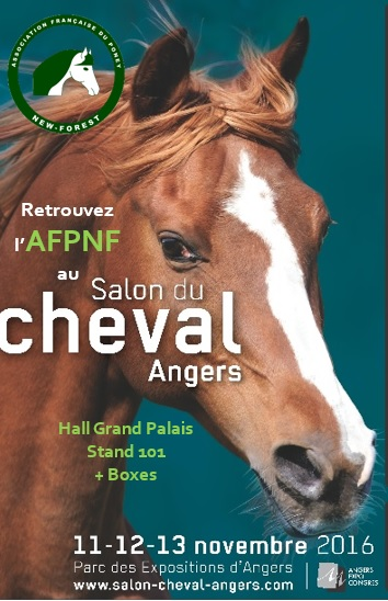 affiche salon angers 2016_nf