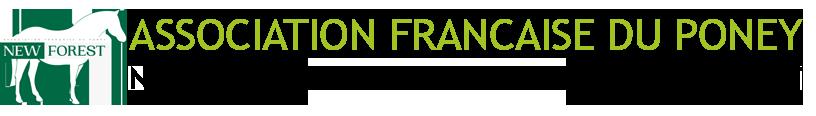 Association du New Forest et New Forest de croisement